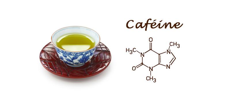 Caféine dans le thé vert