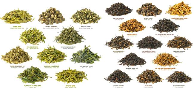 Variétés et types de thés verts