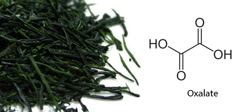 Oxalate dans le thé vert japonais