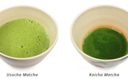 matcha-usucha-koicha-785x360