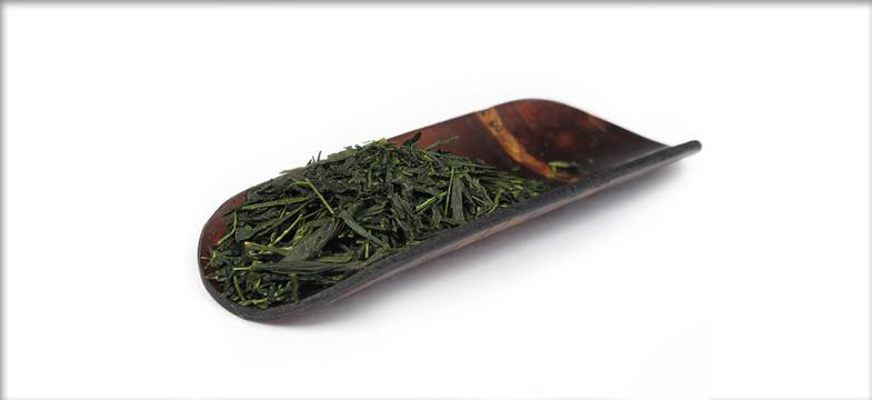 Dosage d'une infusion de thé vert